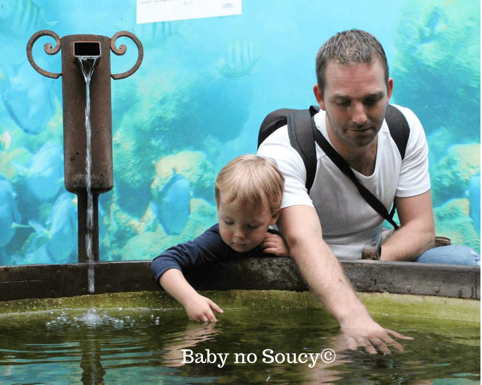sortie en famille bassin tactile baby no soucy