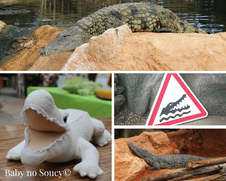 sortie famille parc animalier crocodiles pierrelatte baby no soucy